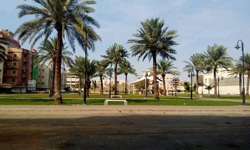 3 Bedroom Apartment for Rent in Riyadh, Riyadh Region - BRAND V. I. P GARDEN FACING SEMI FURNISHED(2BR,3BR,4BD)APARTMENTAVAILABLE  IN AL HAMRA JEDDAH(MOSQUE+MARKET+OTHER)