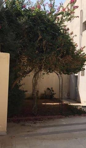 فیلا 3 غرفة نوم للايجار في الرياض، منطقة الرياض - فيلا للإيجار