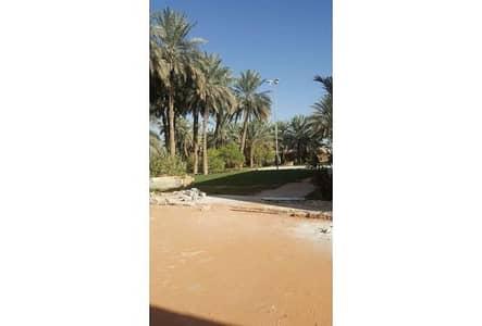 مزرعة 3 غرفة نوم للبيع في الدرعية، منطقة الرياض - Photo